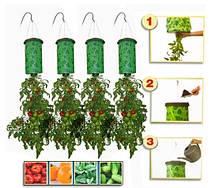 Приспособление для выращивания овощей Плантация, фото 2