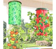 Приспособление для выращивания овощей Плантация, фото 3