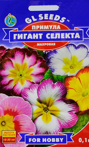 Семена Примула Гигант Селекта 0,1г  For Hobby