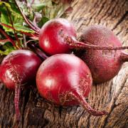 каталог семян овощных культур
