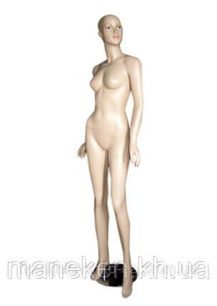 Манекен женский Q 25-33, фото 2