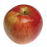 Яблука Джонатан