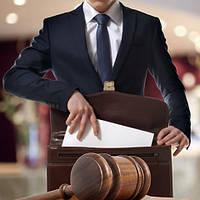Представительство в судебном заседании