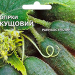 среднеспелые семена огурцов для открытого грунта