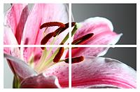 Картина модульная Цветы МD 037