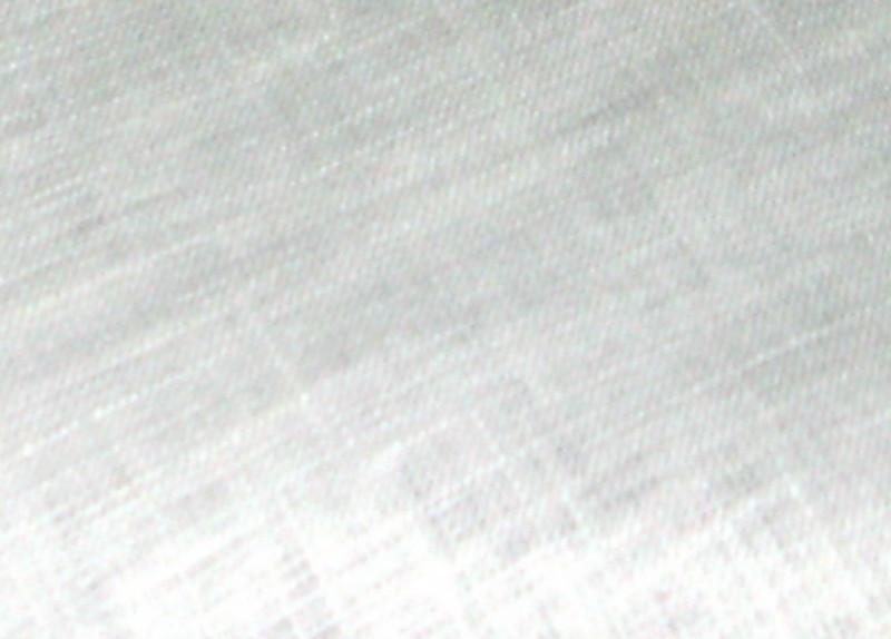 Льон білоруський (білий)