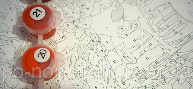 Раскраска по номерам Марипоса холст