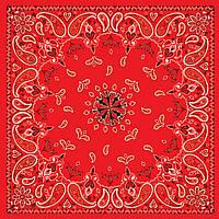 Бандана ZAN Red Paisley