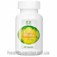 Корал Люцерна Coral Alfalfa 400 мг 120 капс противовоспалительное для почек и мочевого пузыря мочегонное USA