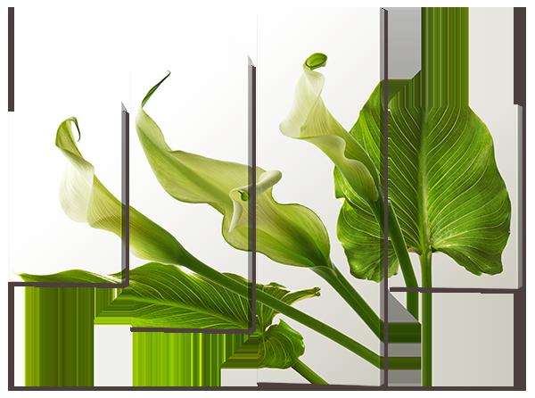 Модульная картина Каллы на сером фоне 126* 93,5 см Код: w7329