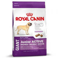 Корм Royal Canin Giant Junior Active