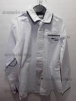 """Детская рубашка на мальчика (подросток) (9-12 лет) с галстуком """"Indus-2"""" LM-825"""