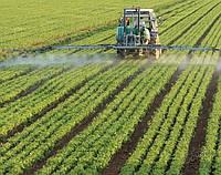 Фермери в Україні бояться впроваджувати точне землеробство
