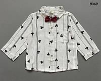 Рубашка для мальчика. 80, 90, 100, 120 см