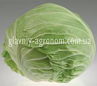 Семена капуста Грэндслэм Ф1 (1000 семян)