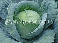 Семена капуста Тенесити Ф1 (1000 семян)