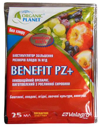 Стимулятор роста Бенефит + (25 мл) — для увеличения размера плодов, фото 2