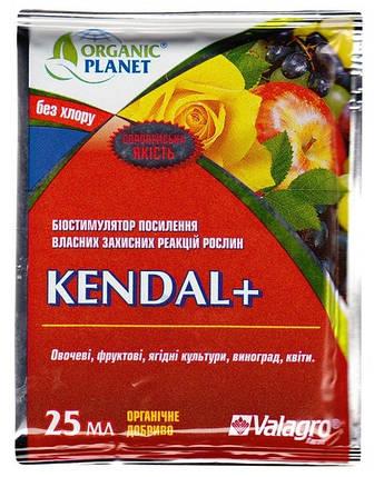 Биоиммуностимулятор Кендал+ (25мл) - стимулирует защитные реакции растения, устойчивость к стрессам и болезням, фото 2