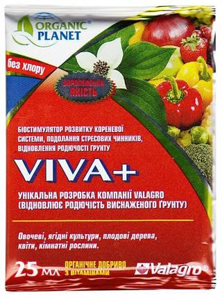 Биостимулятор Вива + (25 мл) — развитие корневой системы, преодоления стрессов, восстановление плодородия почв, фото 2