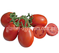 Семена томат CXD 265 F1 (10000 семян)