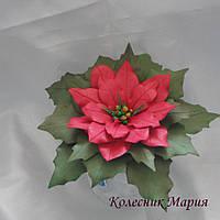 Рождественский цветок Пуансеттия (основа на выбор)