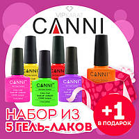 Набор из 5 гель лаков Canni + 1 в подарок