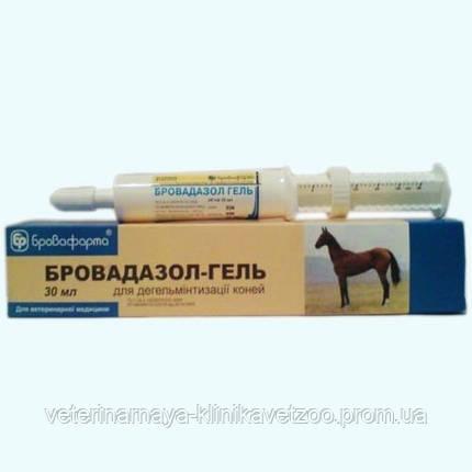Бровадазол-гель (30 мл) шприц-туба Бровафарма противоглистное средство для лошадей, фото 2