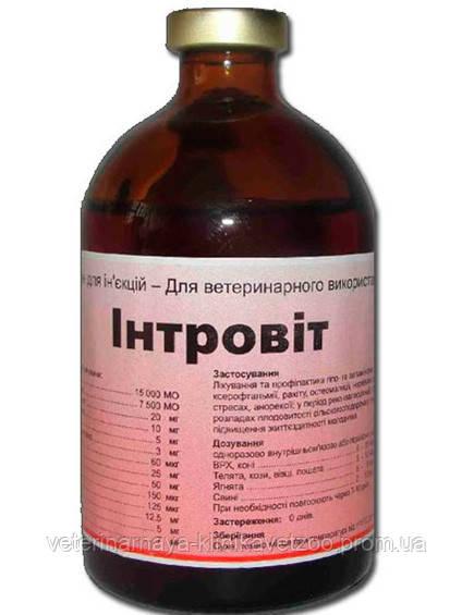 Интровит 100 мл (Interchemie) Нидерланды. Комплексный витаминно-минеральный препарат для ветеринарии