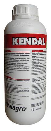 Биоиммуностимулятор Кендал (1 л) — стимулирует защитные реакции растения, устойчивость к стрессам и болезням, фото 2