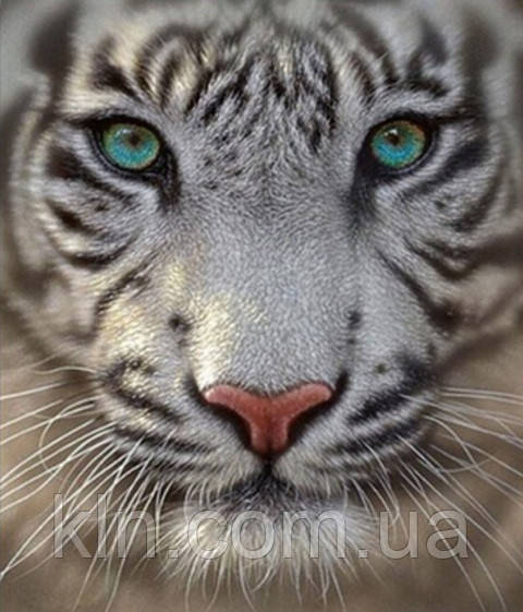 Набор алмазной вышивки Белый тигр 35 х 30 см (арт. FS314)