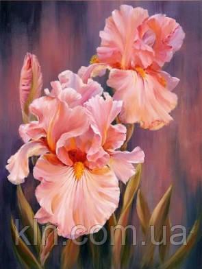 Алмазная вышивка Нежные цветы 40 х 30 см (арт. FS313)