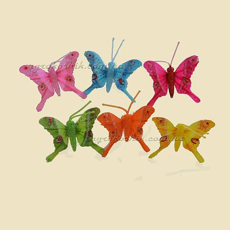 """Зажим для орхидей """"Бабочка"""" 5см, фото 2"""