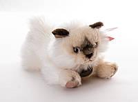 Кошка персидская 25 см Aurora (K9810354)