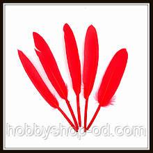 Пір'я натуральні яскраво-червоні (10 штук)