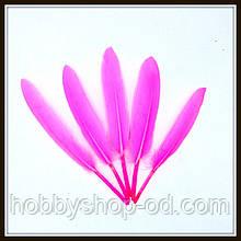 Пір'я натуральні яскраво-рожеві (10 штук)