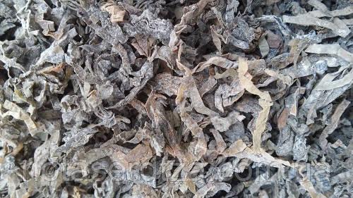 Ламинария сушеная полезные свойства