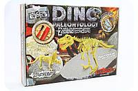 Набор юного археолога - Раскопки скелетов протоцератопса и тираннозавра
