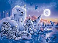Алмазная вышивка Царство животных 40 х 30 см (арт. FS311)