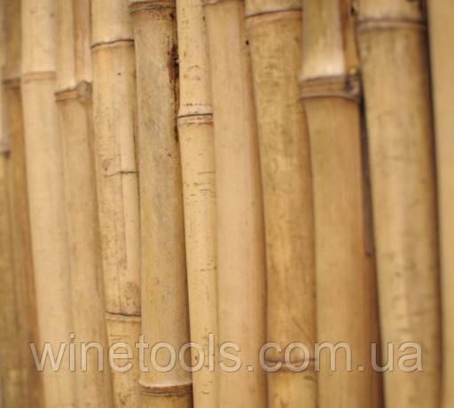 Бамбуковые колья от 295 см 22/24 мм