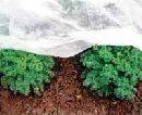 Агроволокно заморозков спанбонд Ищем представителей в регионах