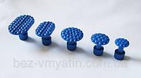 Клеевые грибки Blue Tabs, 5 шт.