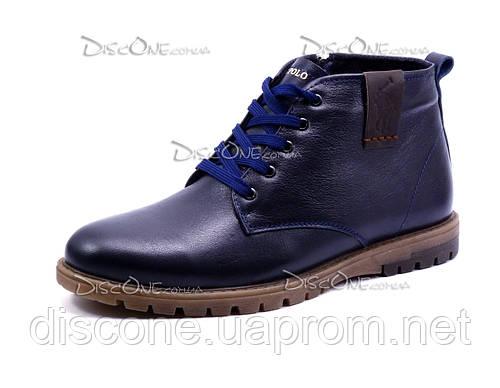 Зимние ботинки на меху US POLO, мужские, натуральная кожа, синие