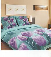 Комплект полуторного  постельного белья ТЕП Магический тюльпан