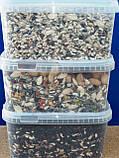 Корм для крупных попугаев + арахис (DELI NATURE-BEYERS BELGIUM) № 60, фото 2