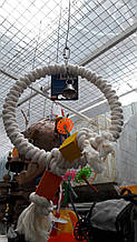 Кільце з дзвоником і кубиками дерева для папуги (Nobby)
