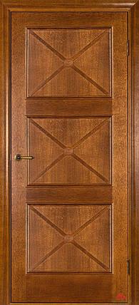 Двери Белоруссии Адант ПГ дуб тонированный, фото 2