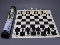 Шахматы в тубусе (большие)