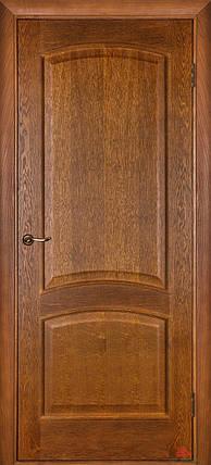 Двери Белоруссии Капри ПГ дуб тонированный, фото 2
