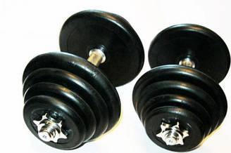 Гантели металл черные ( 30 кг)