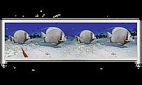 Экран под ванну «АРТ», Рыбки, 140см.